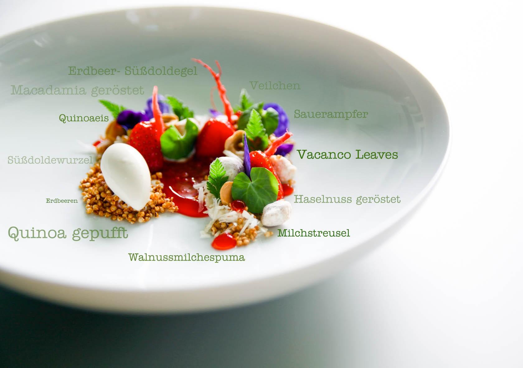 Erdbeer | Quinoa | Süßdolde