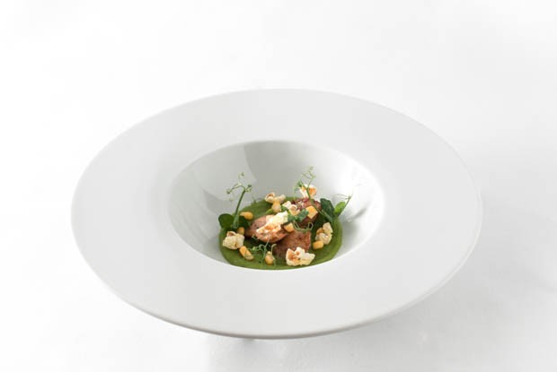cream of corn soup & sot l'y laisse | pea cream | curry popcor
