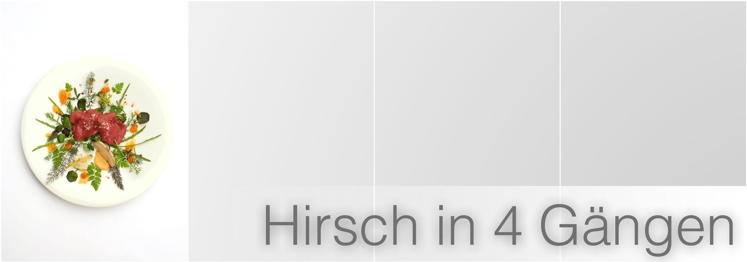 Hirsch-in-4-Gängen-1